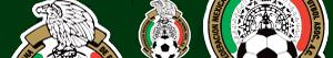 Emblems of Mexican Football Championship - Mexican Primera División FMF coloring pages